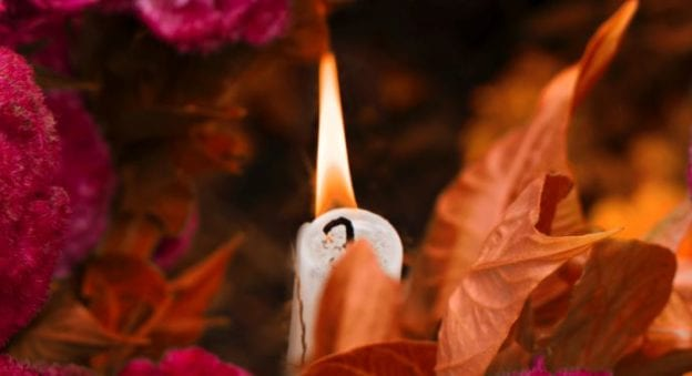 cremation services in Bellevue, WA